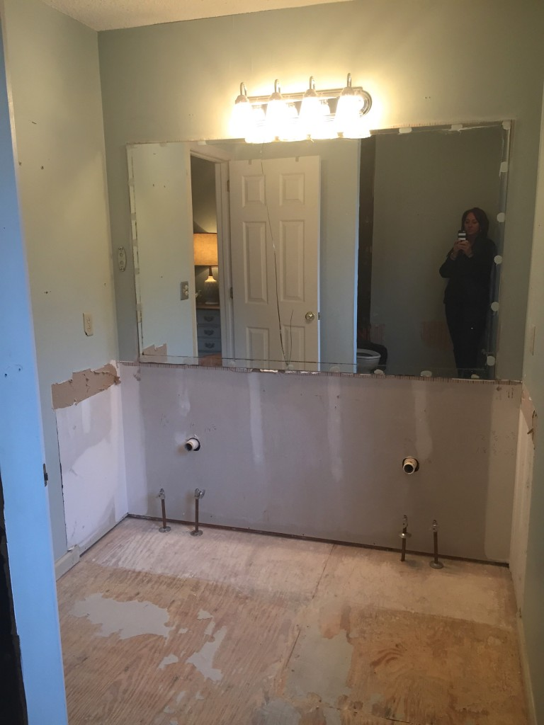 Vanities removed- demo in progress